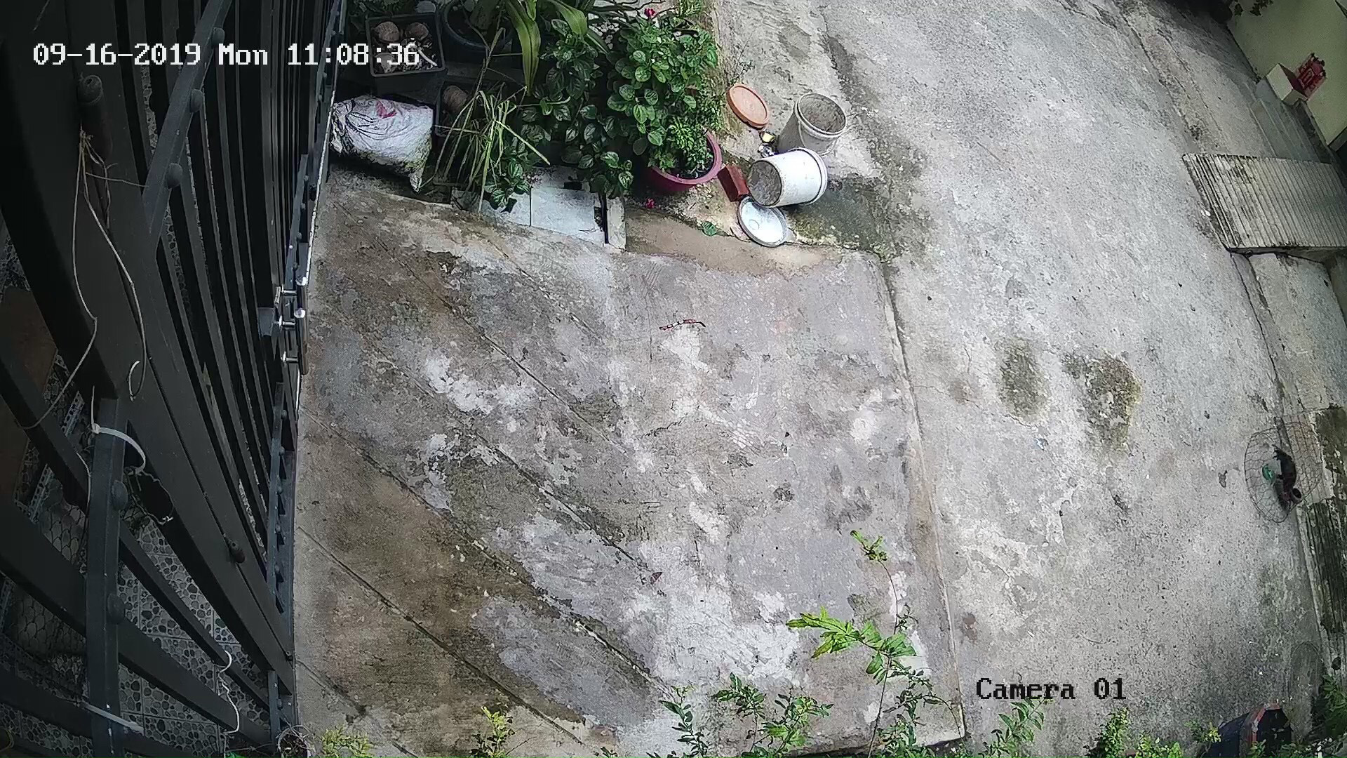lắp đặt camera tại nhà tphcm